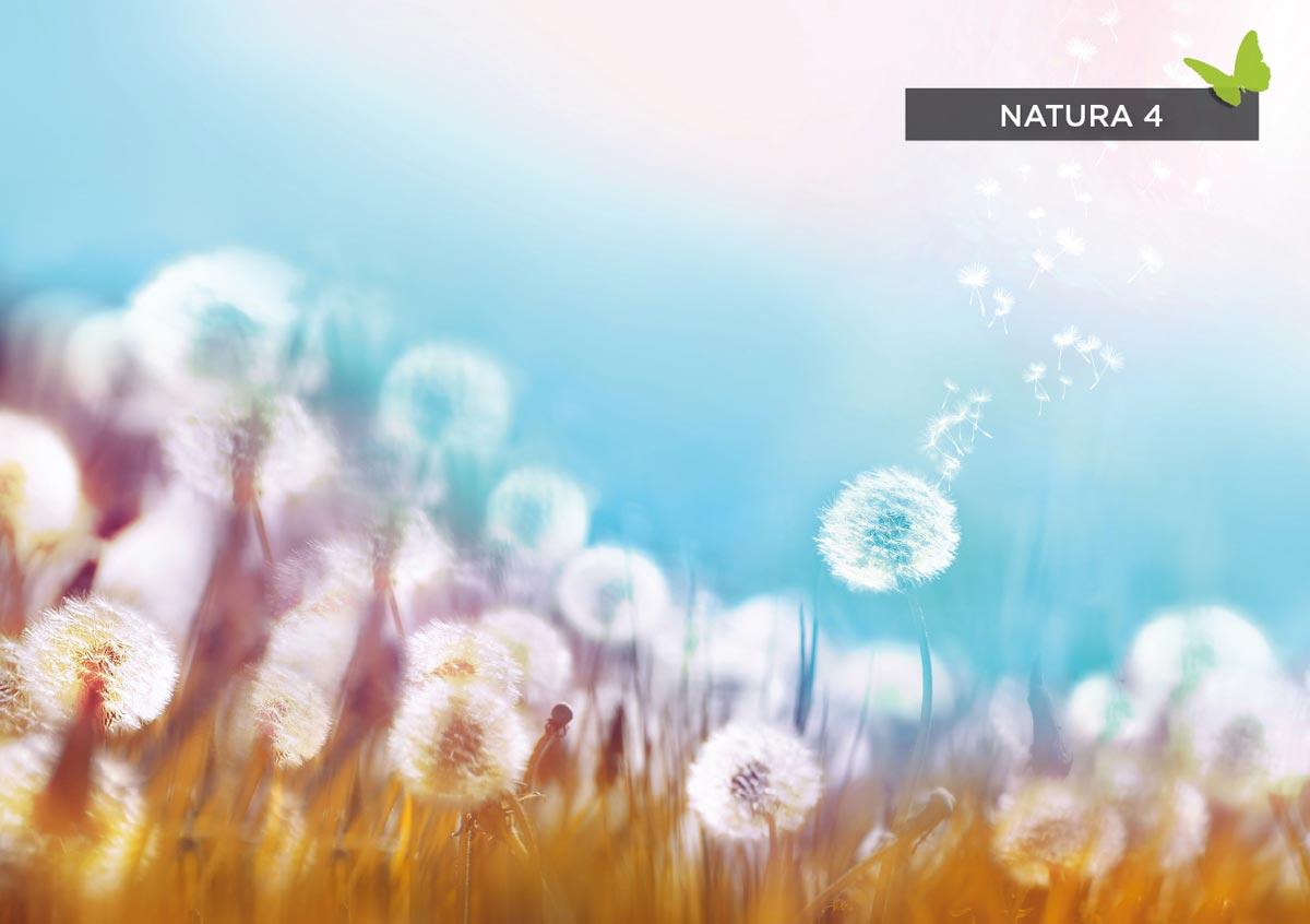 cortina-roller-impresa-natura-4